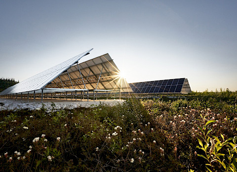 Old Crow solar farm (Photo: GBP Creative)